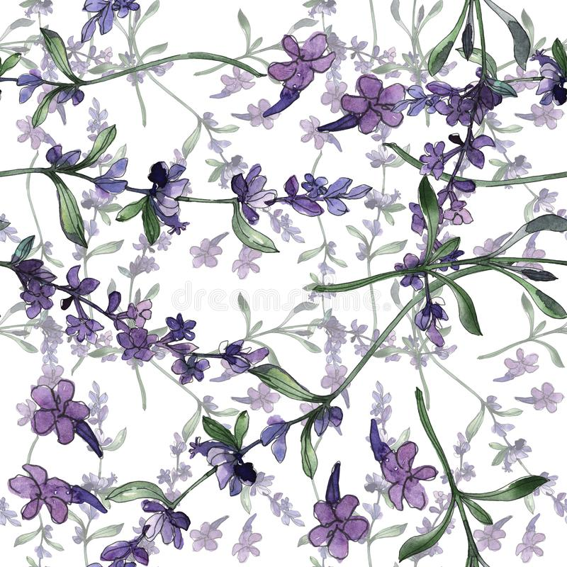 Violet lavender floral botanical flowers. Watercolor background illustration set. Seamless background pattern. vector illustration