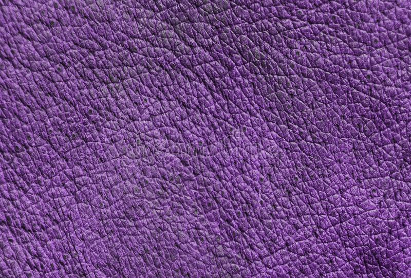 Leather texture with pores. Violet leather texture with pores stock photo