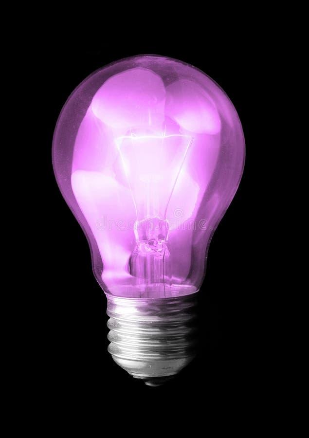 Violet light bulb stock photo
