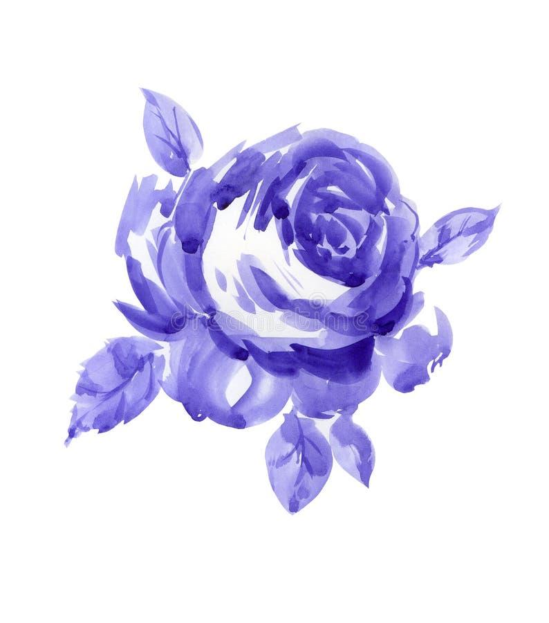 violet rose ilustracji