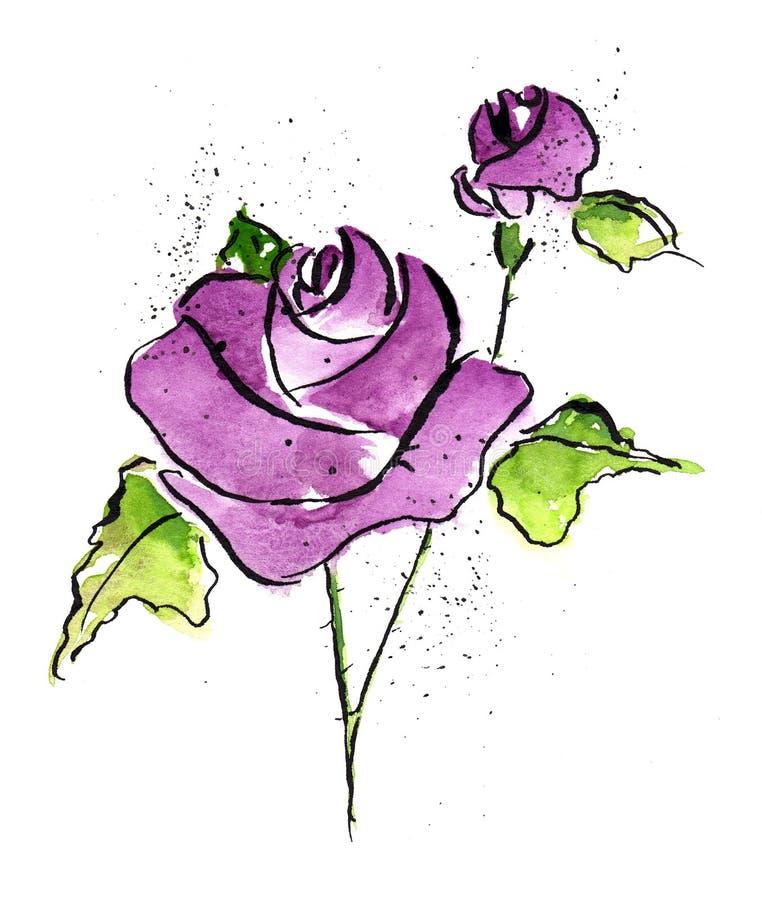 violet rose royalty ilustracja