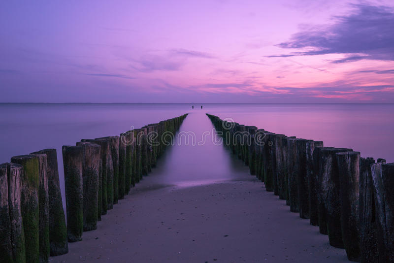 Violet seascape. Violet sunset at the beach royalty free stock photography