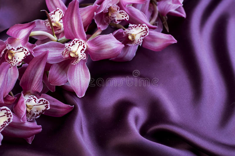 Download Violet Silk and Orchids stock image. Image of dark, fold - 17817531