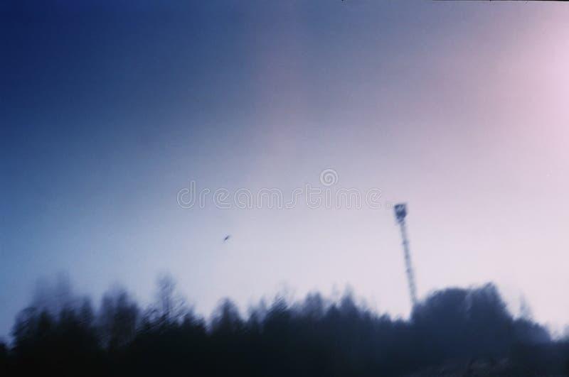 Violet Sky stock photography