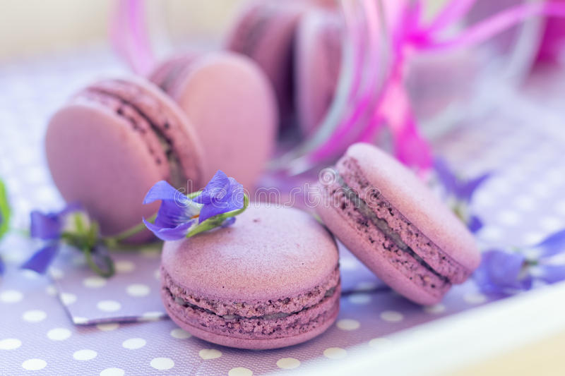 Violet sweet delicious macaroons and fresh violas. On napkin polka dot. Shallow depth of field. Coloring toned photo royalty free stock photography