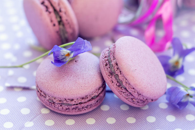 Violet sweet delicious macaroons and fresh violas. On napkin polka dot. Shallow depth of field. Coloring toned photo royalty free stock photos