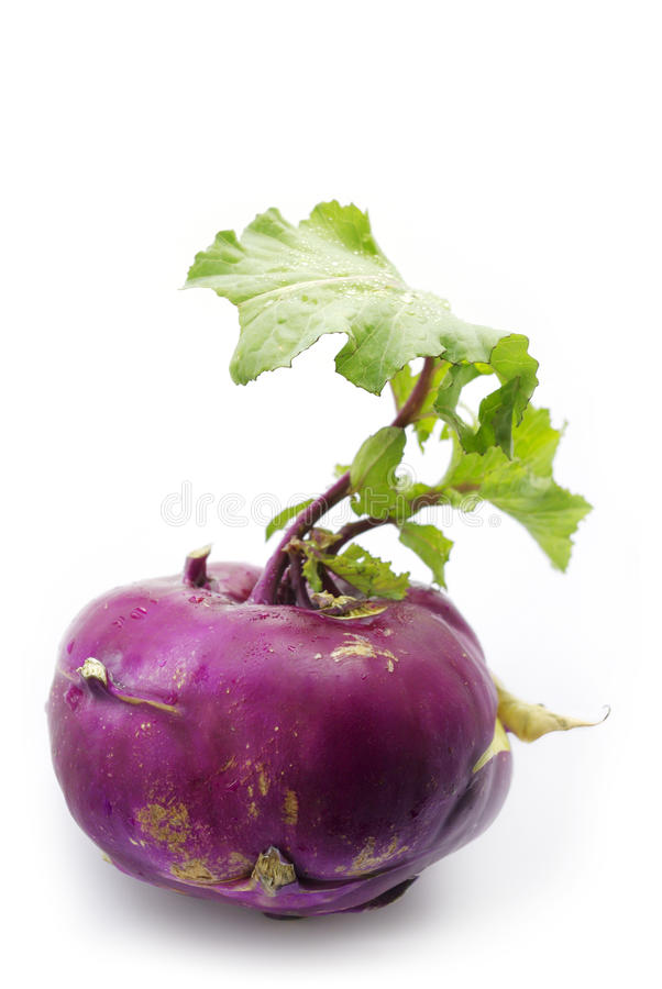 Violet turnip with green top royalty free stock image