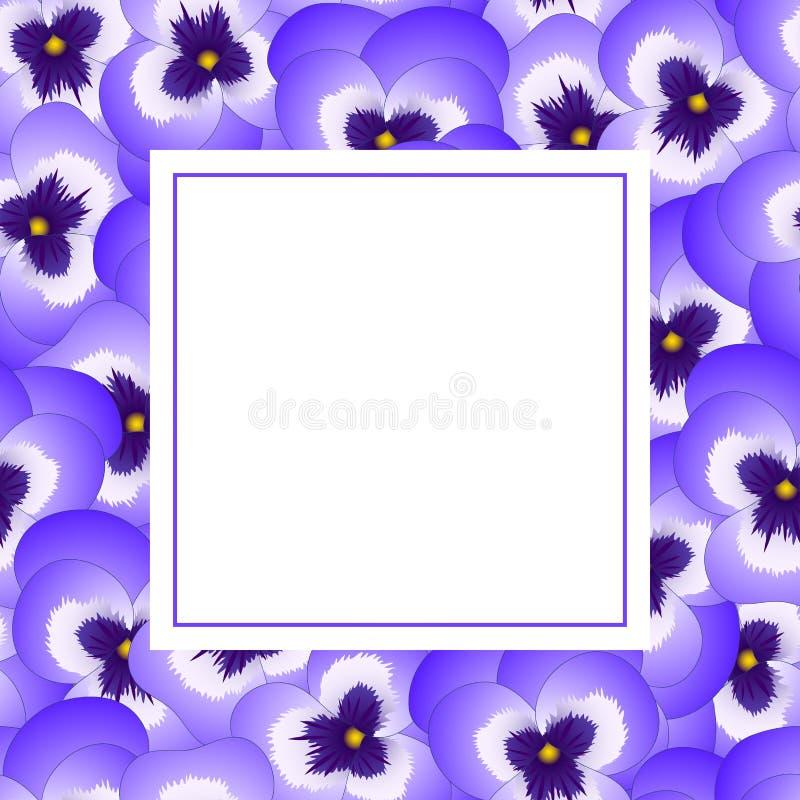 Violet Viola Garden Pansy Flower Banner Card Border. Vector Illustration.  royalty free illustration