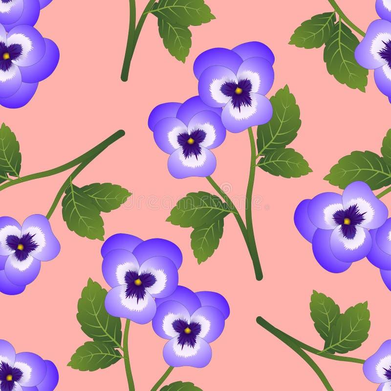 Violet Viola Garden Pansy Flower on Pink Background. Vector Illustration.  royalty free illustration