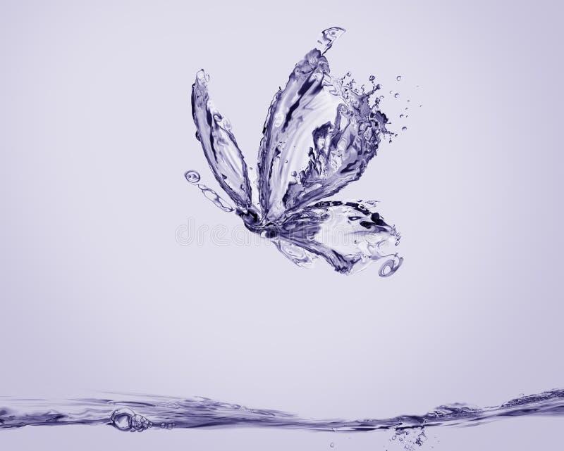 Violet Water Butterfly royaltyfria bilder