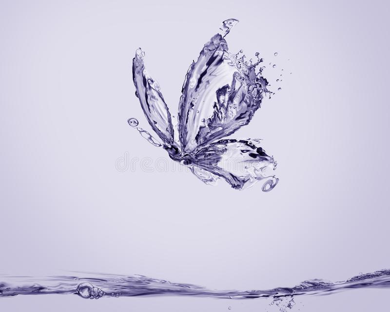 Violet Water Butterfly royalty free stock images