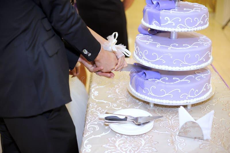 Violet Wedding Cake Stock Images