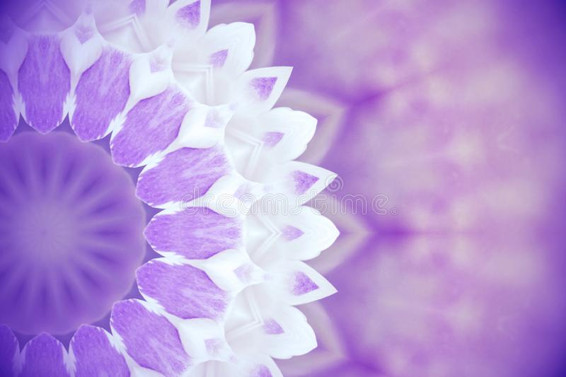 Violet wild flowers with kaleidoscope effect, abstract color Ult royalty free illustration