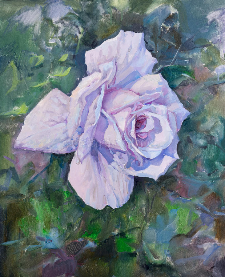 A violeta bonita aumentou imagem de stock royalty free