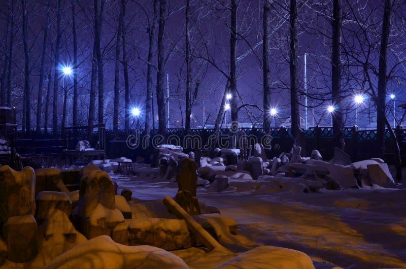A violeta ilumina a cena do inverno da noite fotos de stock