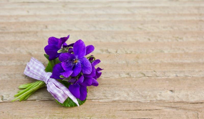 Violetas fotos de stock