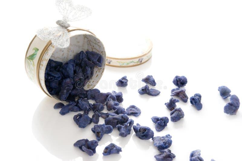 Violetas cristalizadas foto de stock royalty free