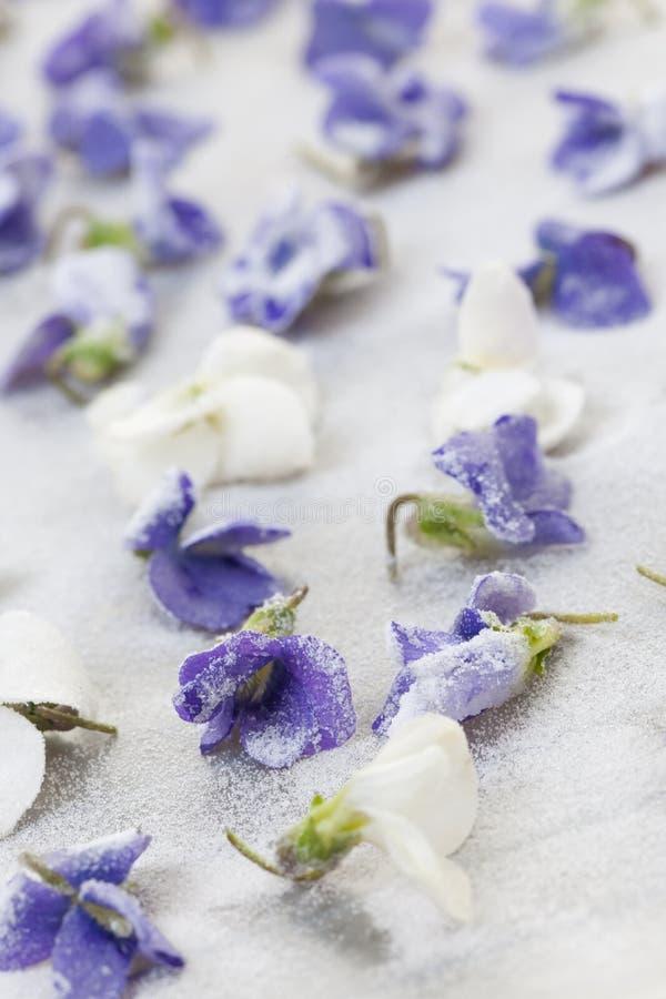 Violetas cristalizadas imagens de stock royalty free