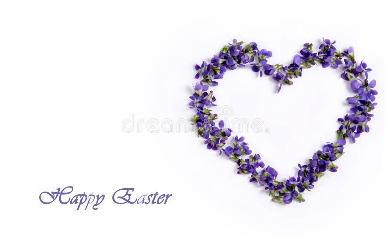 Violetas delicadas de la primavera en la forma de un corazón en un fondo blanco Pascua feliz imagenes de archivo