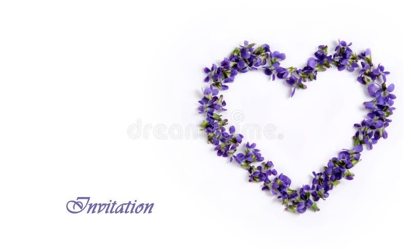 Violetas delicadas de la primavera en la forma de un corazón en un fondo blanco Tarjeta _1 de la invitación fotos de archivo