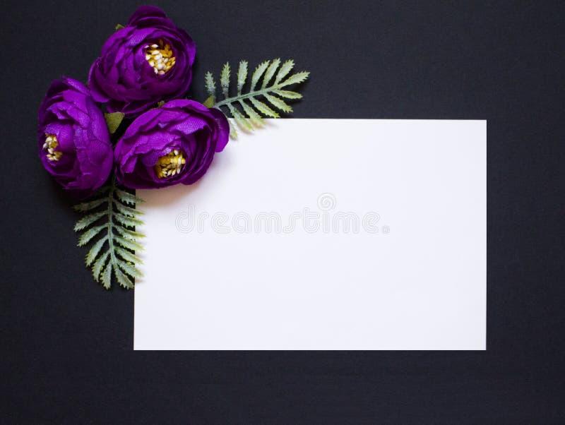 Violeten blommar på en svart bakgrund Vit fyrkant på en svart bakgrund Ett mellanrum för en vykort arkivbild