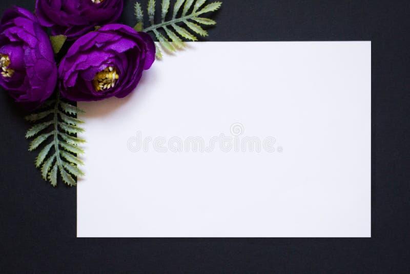 Violeten blommar på en svart bakgrund Vit rektangel på en svart bakgrund Ett mellanrum för en vykort royaltyfri foto