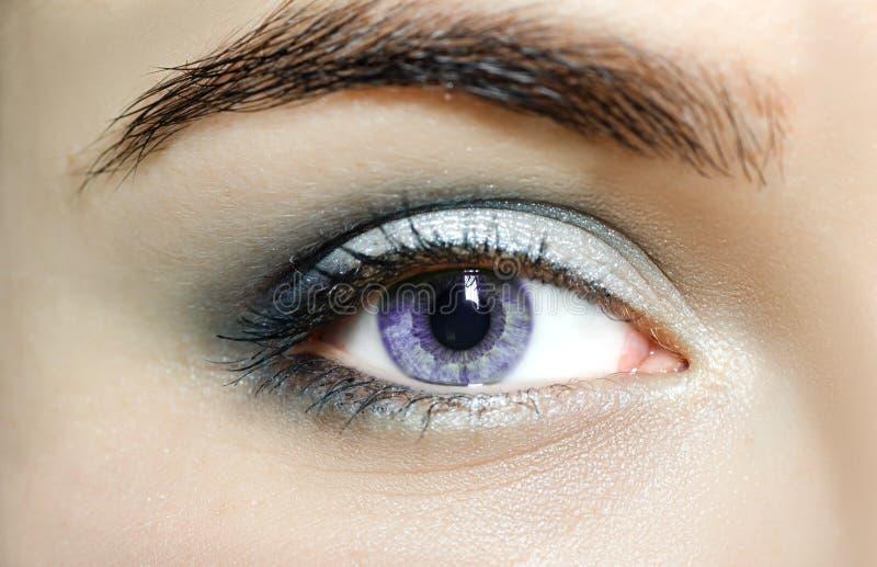 Violeten synar upp mutationögon, slut Det mänskliga ögat av en kvinna med ljusa skönhetskönhetsmedel och långa naturliga ögonfran royaltyfria bilder
