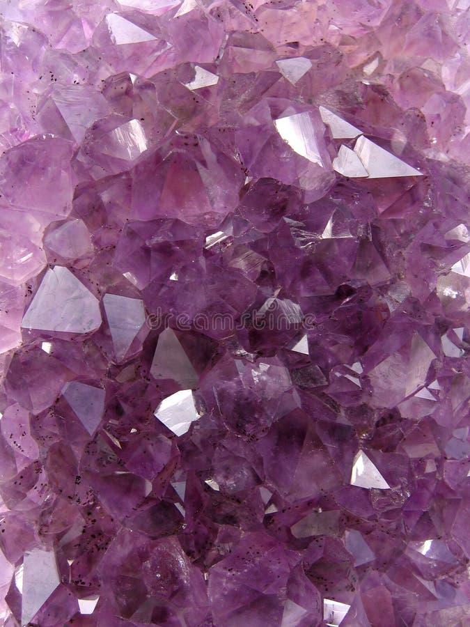 Violetkleurig tapijt stock afbeelding