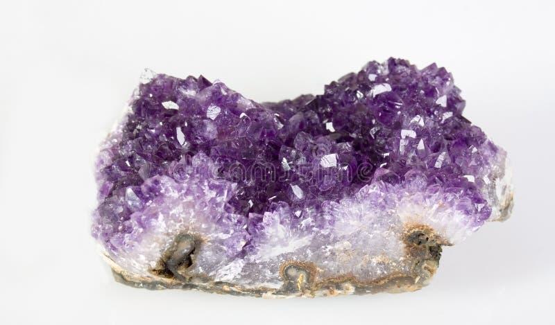 Violetkleurige Cluster royalty-vrije stock afbeeldingen