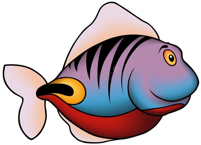 Violett-blaue Korallenrote Fische Stockfoto