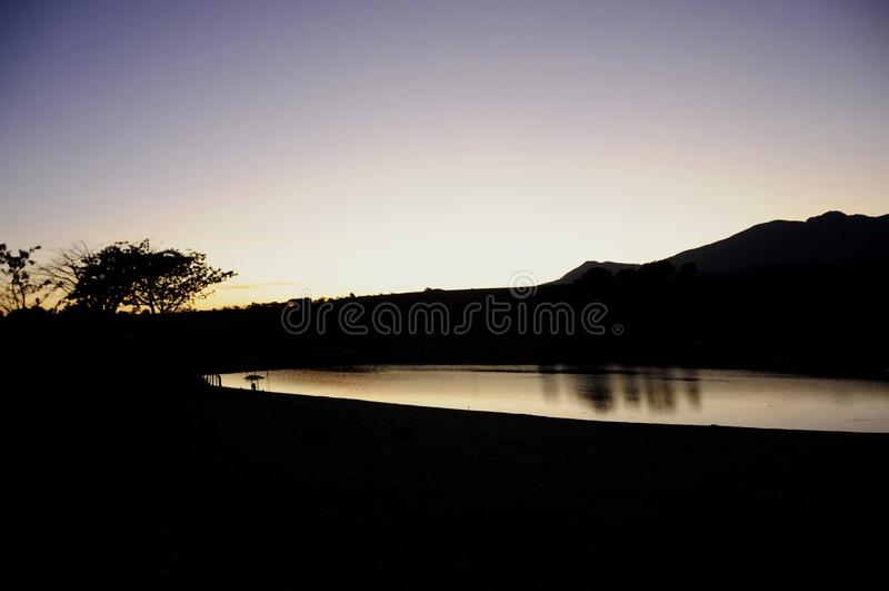 Violett loppBrasilien landskap arkivfoto