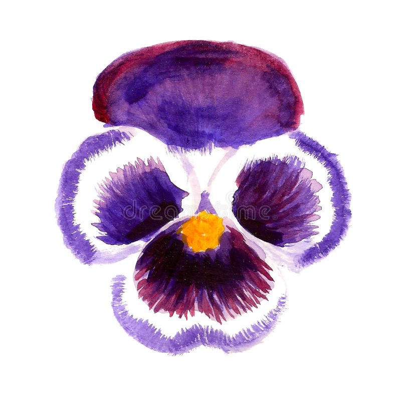 Violett penséblomma royaltyfri illustrationer