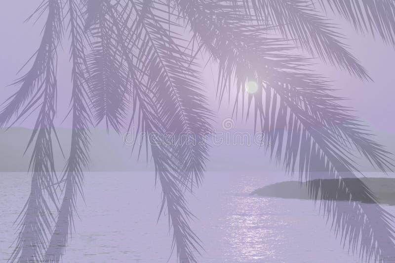 Violette abstrakte Palme-Ozeanlandschaft bei Sonnenuntergang stockfoto