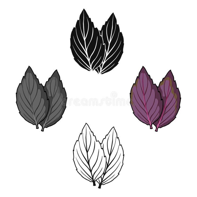 Violette Basilikumikone in der Karikatur, schwarze Art lokalisiert auf wei?em Hintergrund Kraut eine Gew?rzsymbolvorrat-Vektorill vektor abbildung