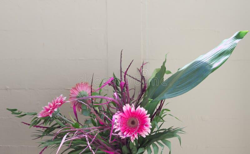 Violette Blume und Blätter einer Anlage im Garten lizenzfreies stockbild