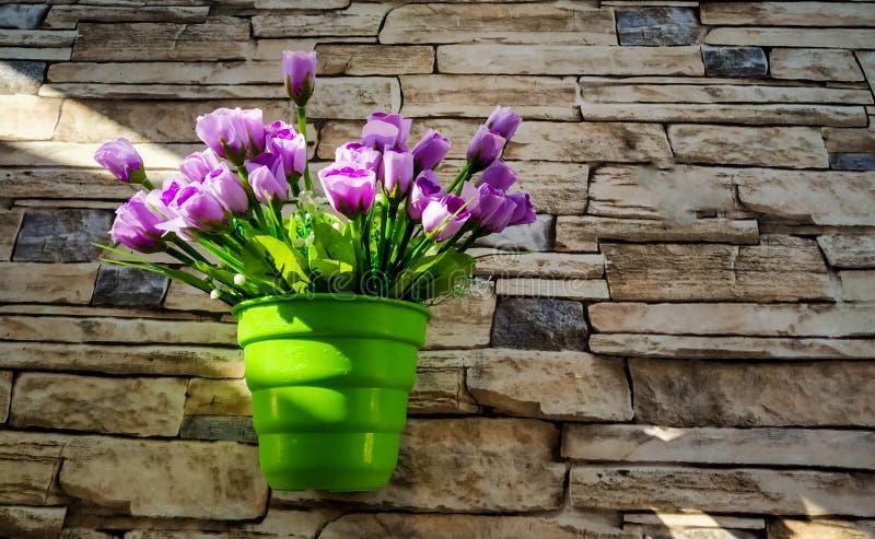 violette Blumen in einem grünen Blumentopf befestigt zur Steinumhüllungswand mit Beschaffenheit lizenzfreie stockfotos