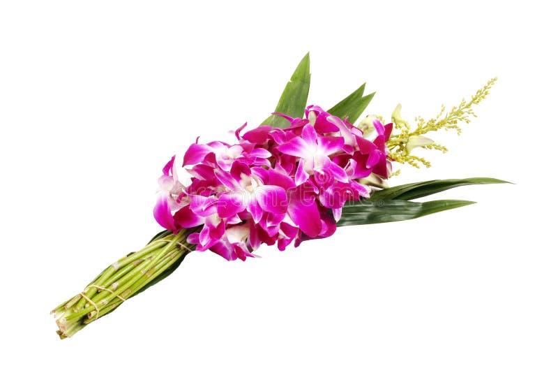 Violette Orchidee mit pandan für das buddhistische Bitten lokalisiert auf Weiß stockfoto