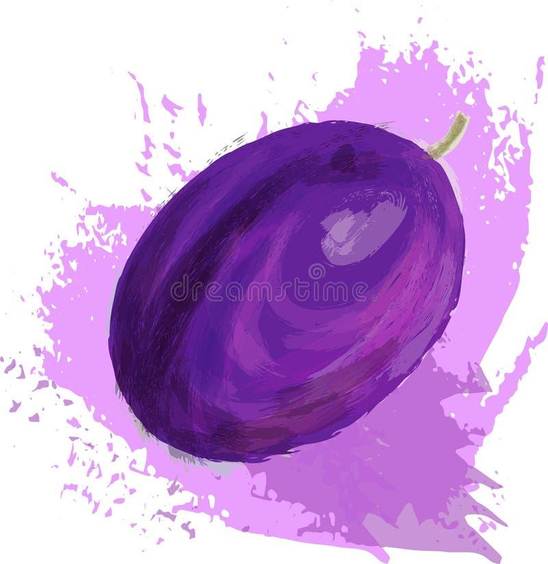Violette pruim vector illustratie