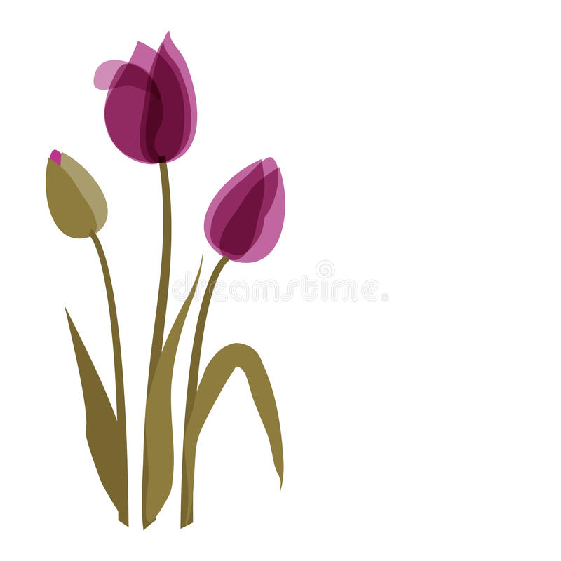 Violette tulp op de achtergrond royalty-vrije illustratie