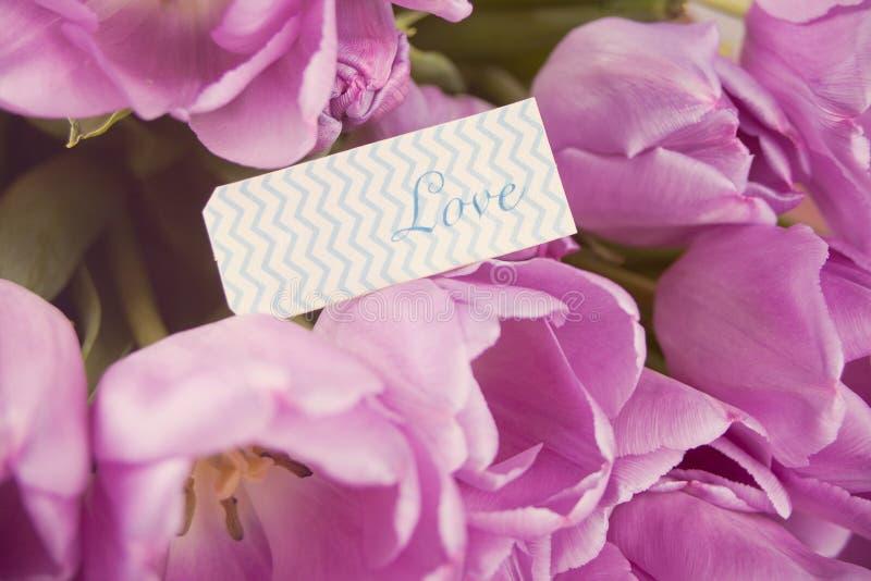 Violette Tulpen und Anmerkung mit Wortliebe stockfotos