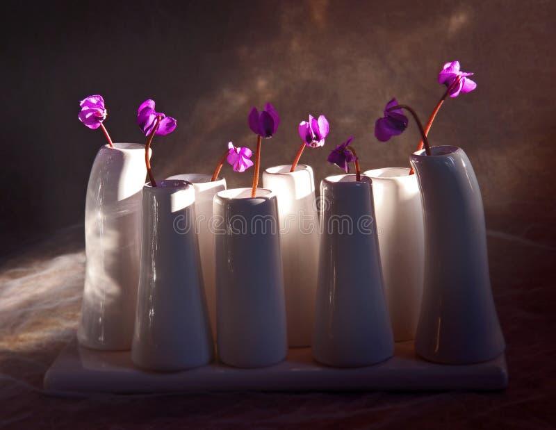 Violettes dans un vase. photographie stock
