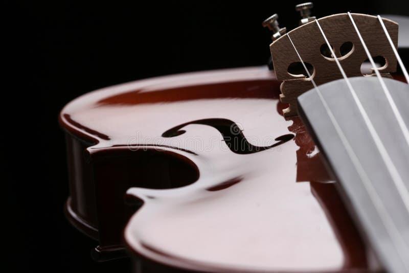 Violin_1 foto de archivo