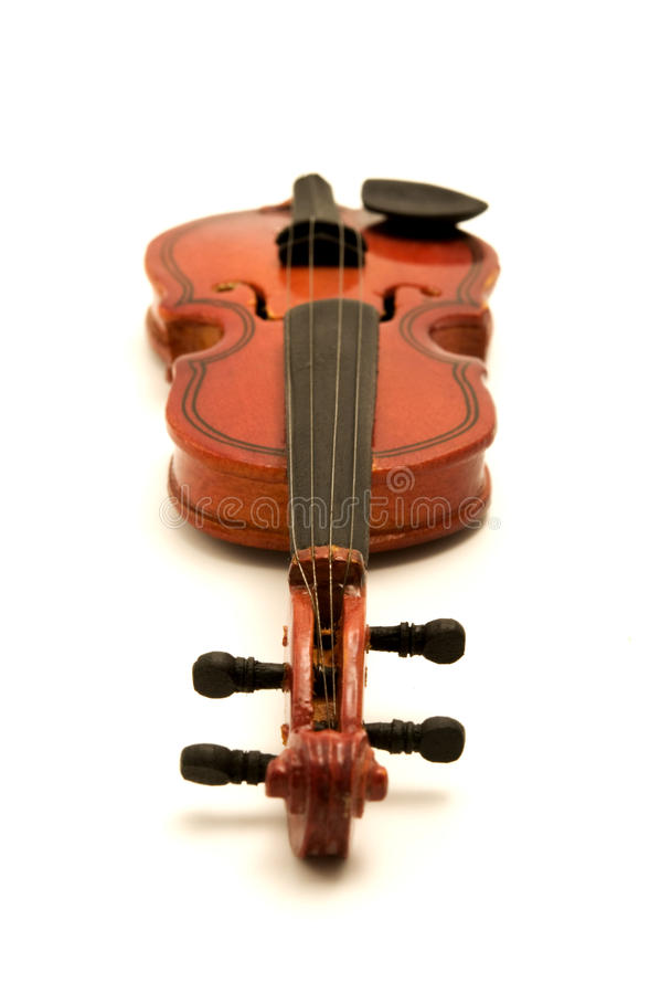 Violin. On a white background royalty free stock image
