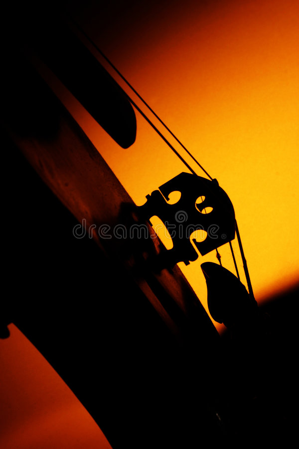 Violin. Instrument, still life, italy royalty free stock image