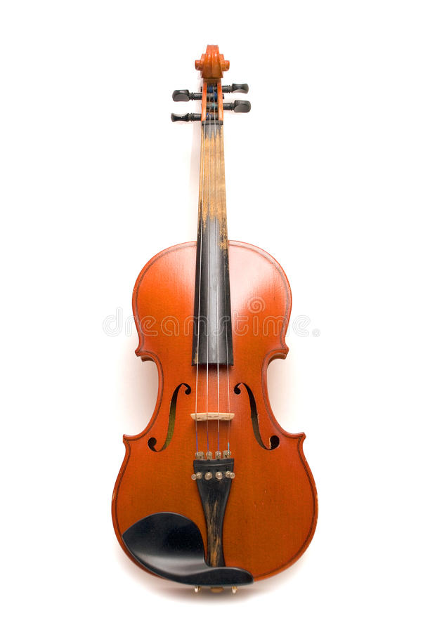 Violin. Acustic violin isolated on white background stock photo