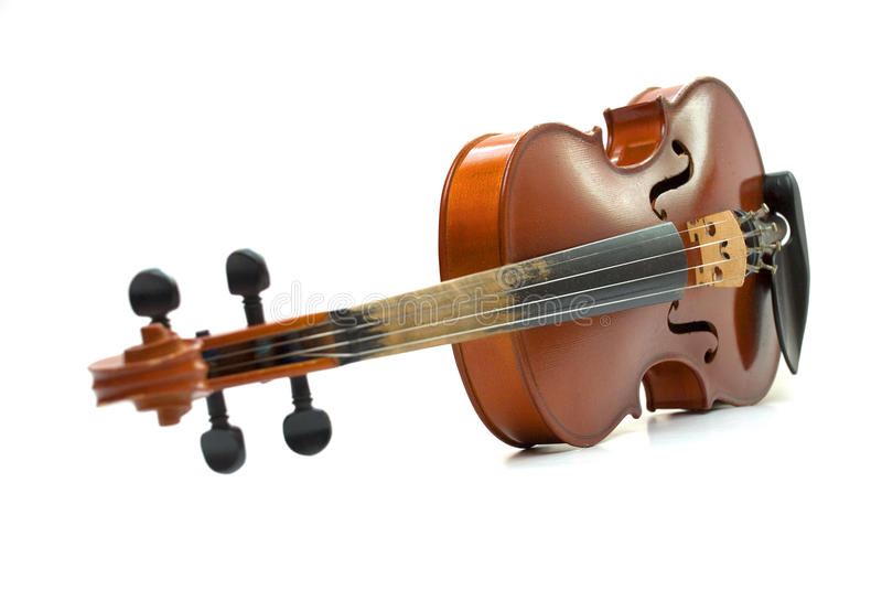 Violin. Acustic violin isolated on white background stock photography