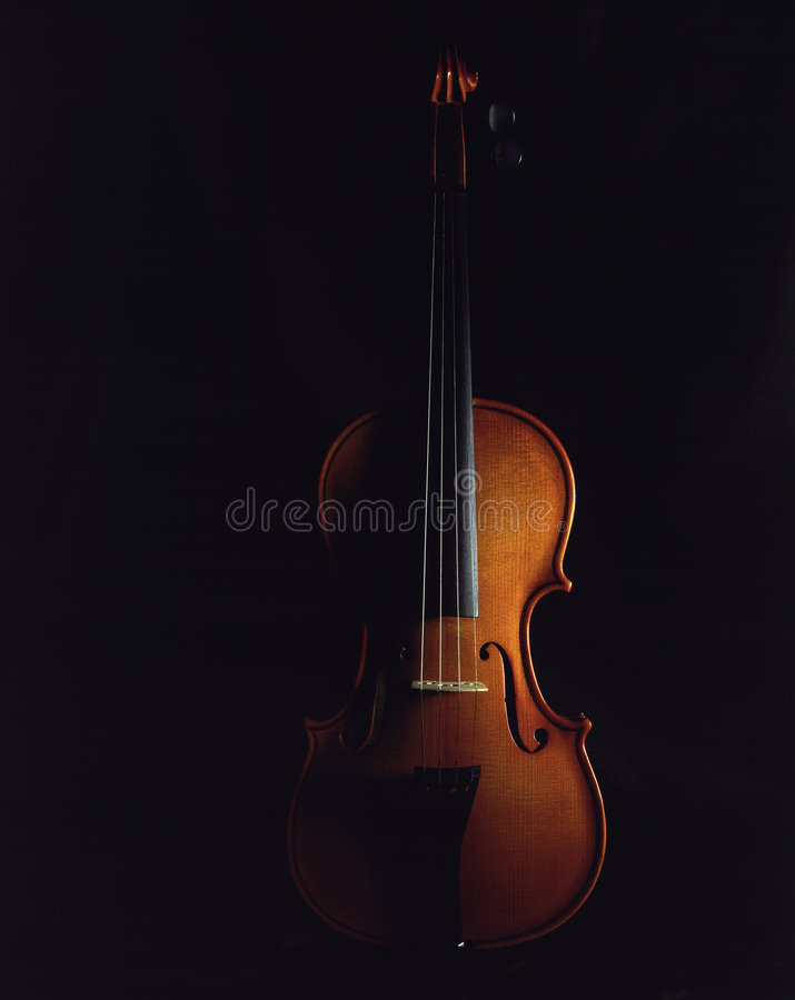 Violin. Sidelighted, dark background