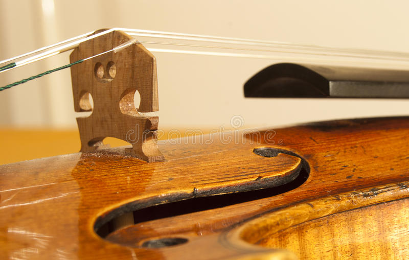 Violin. Close up on a violin with focus on the bridge royalty free stock photo