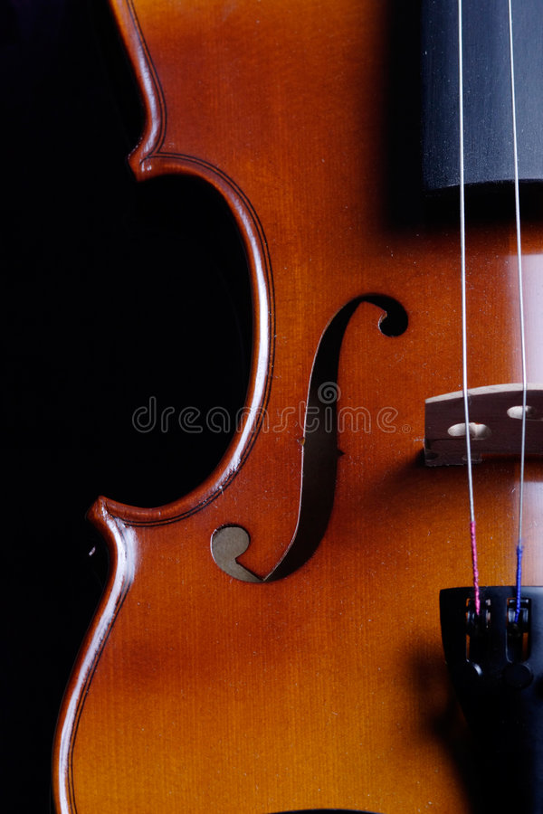 Download Violin stock photo. Image of upright, music, shape, curve - 450516