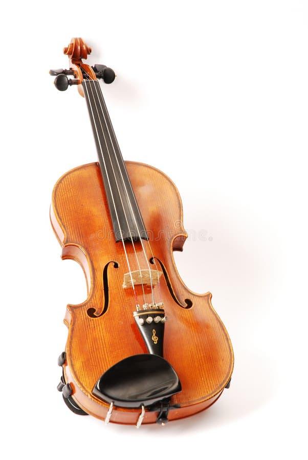 Violin. A original Gagliano violin on a white background stock photography